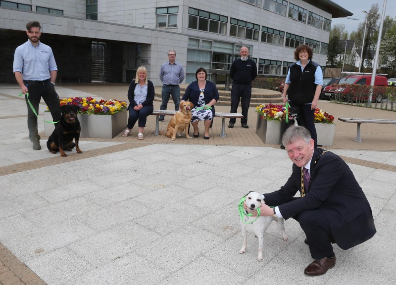 The Mayor of Causeway Coast and Glens Borough Council Alderman Mark Fielding (with dog Poppy) has helped to launch the Green Dog Walkers Scheme alongside Ben Callan, Enforcement Officer, (with dog Mayze) Councillor Margaret Anne McKillop, Ciaran Doran - Senior Environmental Health Officer, the Mayoress Mrs Phyllis Fielding, (with dog Finn) Jeremy Callan, Enforcement Officer and Gail McGrellis, Enforcement Officer (with dog Harley)