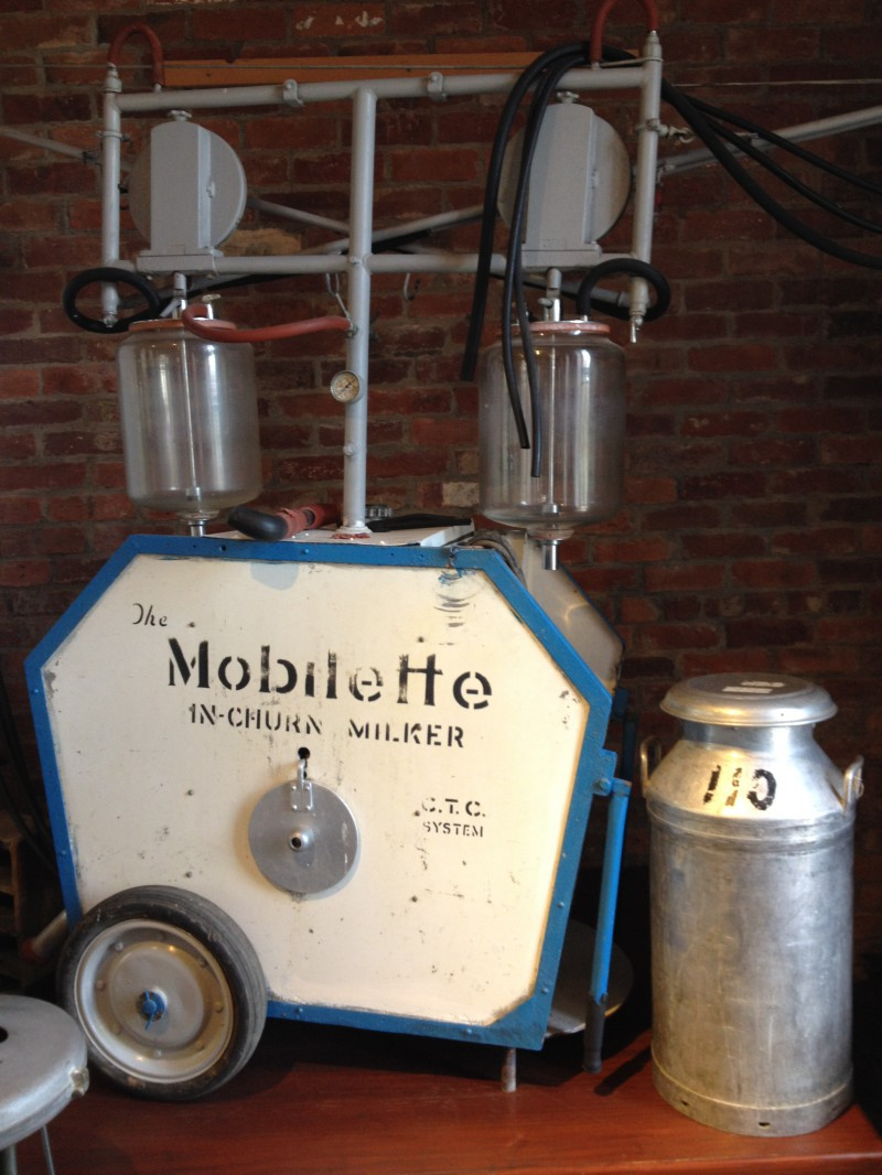 Mobillette Milking Machine