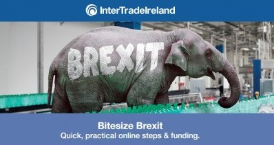 InterTrade Ireland: Bitesize Brexit
