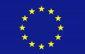 EU SERVICES DIRECTIVE