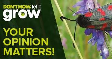 Don't Mow, Let It Grow-Have your say!