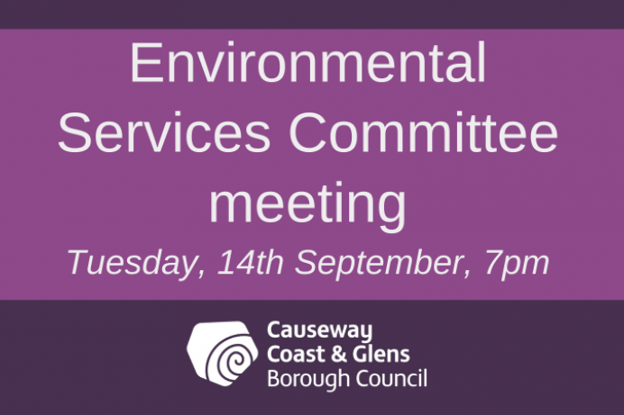 Environmental Services Committee meeting