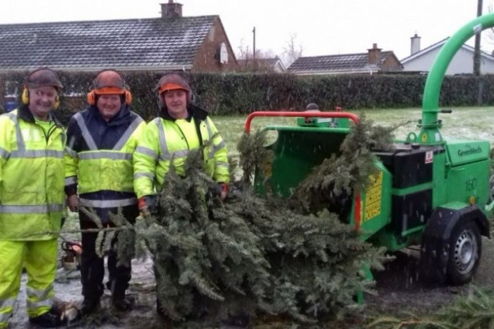 New lease of life for discarded Christmas trees